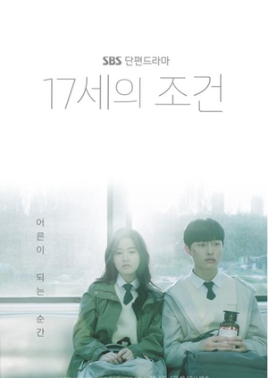 Asian Korean Drama 17세의 조건 / Seventeen-Year-Old's Condition