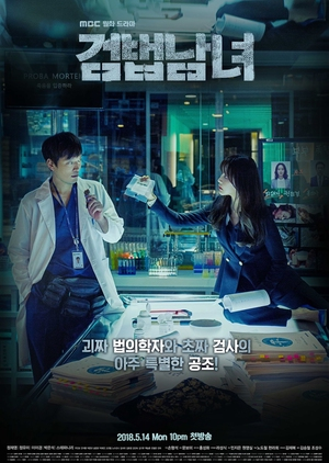 Asian Korean Drama 검법남녀 / Investigation Couple / Partners for Justice