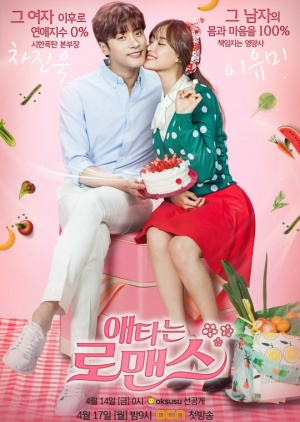 Asian Korean Drama 애타는 로맨스 / My Secret Romance