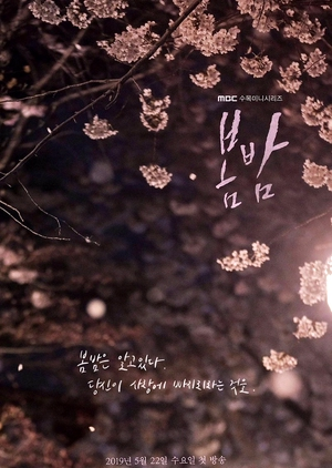 Asian Korean Drama 봄밤 / One Spring Night