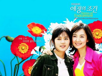 Asian Korean Drama 애정의 조건 / Ae-jung-ui Jo-geon/Conditions of Love