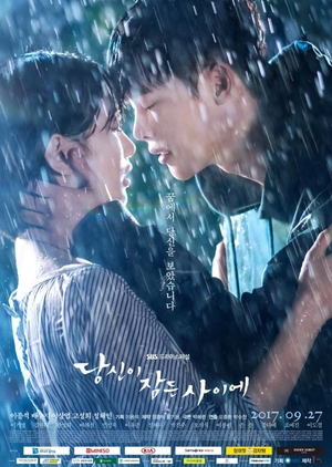 Asian Korean Drama 당신이 잠든 사이에 / While You Were Sleeping