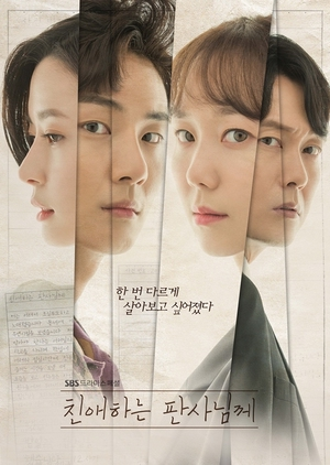 Asian Korean Drama 친애하는 판사님께 / Your Honor /  Dear Judge
